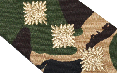Captain Officer Army Cadet Force Rank Slide
