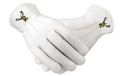 Wholesale Masonic Regalia Machine Embroidered Leather Gloves